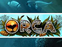 Демо игра Orca
