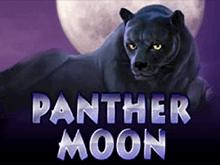 Демо игра Panther Moon